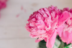 Bukiet różowe peonie na drewnianym stole Prezent walentynki ` s dzień banner tła kwiaty form różowego spiralę trochę Fotografia Royalty Free