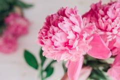 Bukiet różowe peonie na drewnianym stole Prezent walentynki ` s dzień banner tła kwiaty form różowego spiralę trochę Obraz Royalty Free