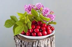 bukiet różowe róże Obrazy Royalty Free
