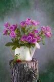 bukiet różowe róże Obrazy Stock