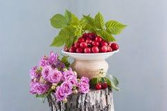 bukiet różowe róże Fotografia Stock