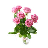 Bukiet Różowe róże Odizolowywać obraz royalty free