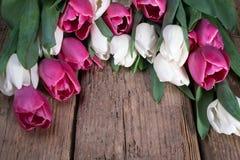Bukiet różowi i biali tulipany na drewnianym stole wiosna kwiat Tworzenie karty dla walentynka dnia, matka dzień i obrazy stock