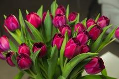 Bukiet różowi tulipany w wnętrzu Obrazy Stock