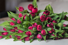 Bukiet różowi tulipany w wnętrzu Zdjęcia Stock