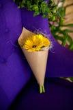 Bukiet różowy gerbera Fotografia Royalty Free