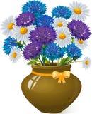 Bukiet stokrotki i cornflowers w glinianym garnku Zdjęcie Royalty Free