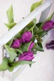 Bukiet tulipany Zdjęcie Royalty Free