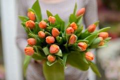 Bukiet tulipany Zdjęcia Royalty Free