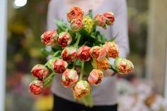 Bukiet tulipany Zdjęcie Stock