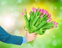 Bukiet tulipany w męskich rękach Zdjęcie Royalty Free