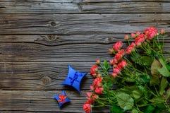 Bukiet urocze różowe róże błękit teraźniejszością Zdjęcie Stock