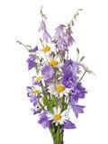 Bukiet wildflowers Obraz Stock