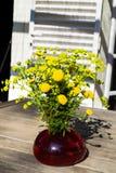 Bukiet wiosna piękny świeży śródpolny kolor żółty kwitnie tansy w czerwonej szklanej wazie na drewnianym stole w ogródzie, tanace Obraz Stock