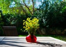 Bukiet wiosna piękny świeży śródpolny kolor żółty kwitnie tansy w czerwonej szklanej wazie na drewnianym stole w ogródzie, Fotografia Royalty Free