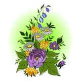 Bukiet z dzikimi kwiatami Obrazy Stock