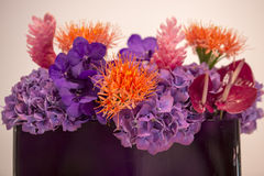 Bukiet z egzotycznymi kwiatami Zdjęcia Stock