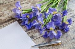 Bukieta blueflag lub irysowy kwiat na drewnianym tle Obraz Royalty Free