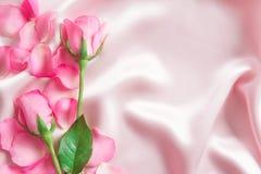 bukieta cukierki menchii róż płatek na miękkich części menchii jedwabniczej tkaninie, r Zdjęcia Royalty Free