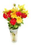 bukieta dalii kwiaty Zdjęcia Stock