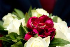 bukieta duży kwiat Obraz Royalty Free