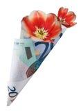 bukieta euro dwadzieścia Zdjęcia Royalty Free