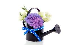 bukieta hortensi purpury Zdjęcia Royalty Free