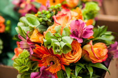 bukieta jaskrawy kwiatu obrazka wektor Fotografia Royalty Free