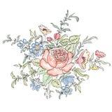 bukieta jaskrawy kwiatu obrazka wektor rama kwiecista wrobić serii Obrazy Royalty Free