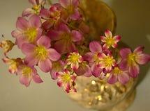 bukieta kwiatów menchie Obraz Stock