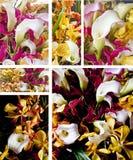 bukieta kwiat Zdjęcie Royalty Free