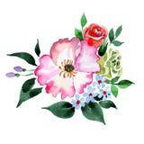 Bukieta kwiat w akwarela stylu odizolowywającym Zdjęcia Stock