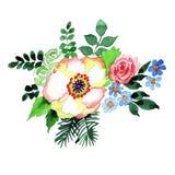 Bukieta kwiat w akwarela stylu odizolowywającym Obrazy Stock