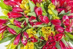 bukieta kwiecisty kwiatów ilustraci wektor Zdjęcia Stock