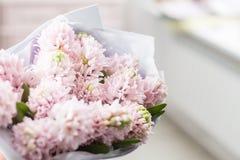 bukieta kwiecisty kwiatów ilustraci wektor pogodna ranek wiosna Młoda szczęśliwa kobieta trzyma piękną wiązkę różowi hiacynty w j Zdjęcie Stock