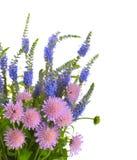 bukieta lato wildflowers Obrazy Stock