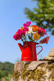 Bukieta ogródu kwiaty Obrazy Royalty Free
