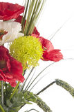 bukieta piękny kwiat Obraz Royalty Free