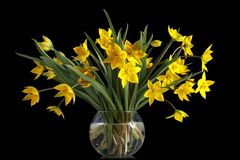 bukieta szklany tulipanów wazy kolor żółty zdjęcie royalty free