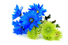 bukietów kwiaty Obrazy Royalty Free