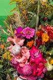 bukiety kwiaty i ziele Obraz Stock