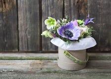 Bukiety menchii i fiołka kwiaty w pudełku na woden backgr Obrazy Stock