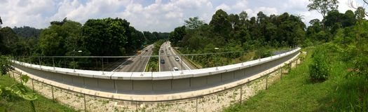 Bukit Timah expressway. Seen from Eco-link bridge in Singapore Royalty Free Stock Photography