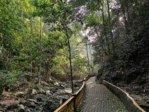 Bukit Wang Recreational Forest em Jitra, Kedah, Mal?sia imagens de stock royalty free