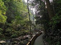 Bukit Wang Recreational Forest em Jitra, Kedah, Mal?sia imagem de stock royalty free