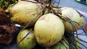 Buko, niyog (frutta della noce di cocco) dalla provincia di Filippine Quezon immagini stock