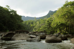 Bukoliczna rzeka blisko Rio De Janeiro Zdjęcia Royalty Free