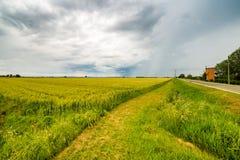 bukolika krajobraz zdjęcie stock