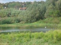 Bukolika krajobraz Romański kraj z małym stawem Włochy zdjęcia stock
