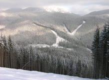 bukovel全景滑雪跟踪乌克兰视图 免版税库存照片